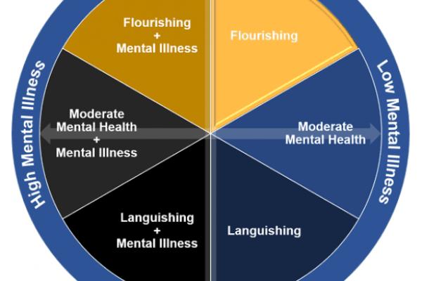 corey_keyes_mental_health_matrix