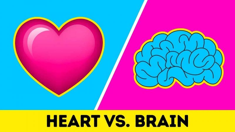 Read more about the article Emotional Management – Heart-Centered vs. Mind-Based Approaches